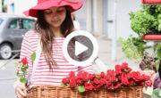 SFR distribue des roses pour la fête des mères avec NON STOP MEDIA Rhone Alpes